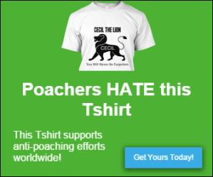 Tshirt ad 2