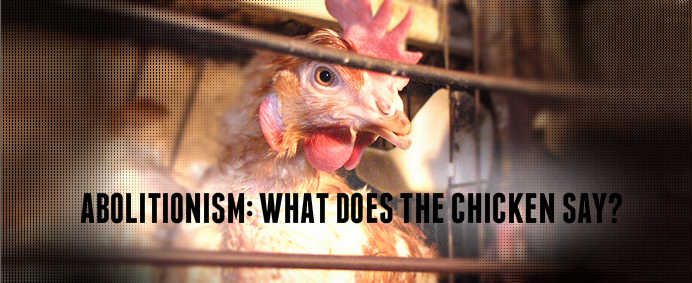 whatdoesthechickensay
