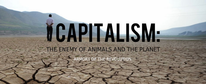 capitalismplea