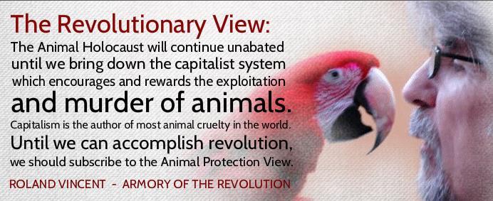 revolutionary view