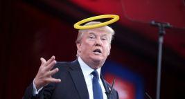 Afbeeldingsresultaat voor trump saint