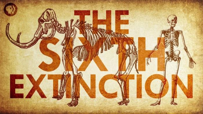 6th-extinction